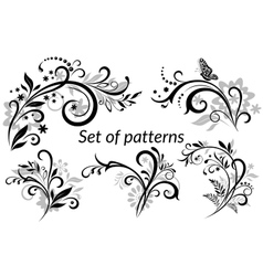 Vintage Floral Calligraphic Patterns vector image vector image