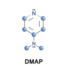 4-dimethylaminopyridine dmap vector