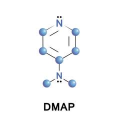 4-dimethylaminopyridine dmap vector