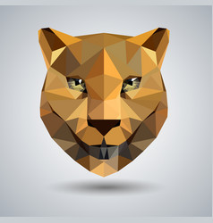 Abstract polygonal tirangle animal cheetah vector