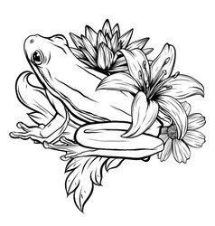 black and white hand drawn ornate doodle frog in vector image