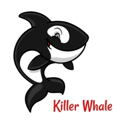 Cartoon black and white killer whale or orca vector