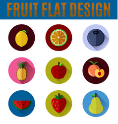 fruit flat icon vector image