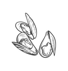 Sketch cartoon sea mussel isolated vector