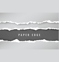 torn paper edge torn paper stripes ripped squared vector image