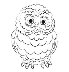 Cartoon image of owl vector