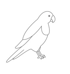 parrot for coloring book vector image