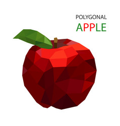 abstract red apple polygonal design vector image