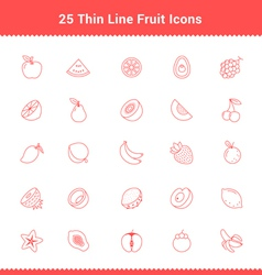 Set of Thin Line Stroke Fruit Icon vector image