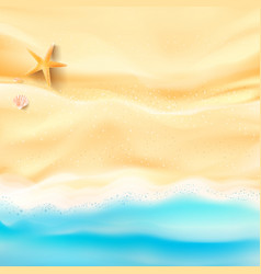abstract background sand and sea beach starfish vector image vector image