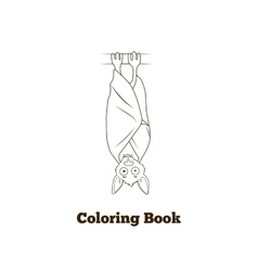 Coloring book forest animal bat cartoon vector image