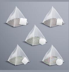 pyramid tea bags realistic set vector image