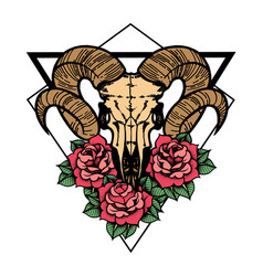 Rose tattoo with skull of a sheep with sacred vector