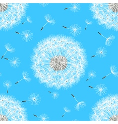 Seamless pattern with spring flowers dandelions vector