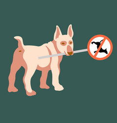 the dog holds a road sign in his teeth flat vector image