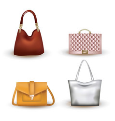 woman bag set on white background vector image