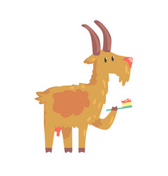 cute cartoon goat brushing teeth with tooth brush vector image vector image