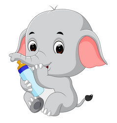 Baby elephant with milk bottle vector