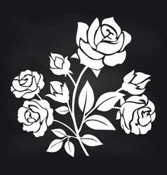 bush of roses flowers on chalkboard vector image vector image
