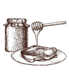 honey ink sketch vector image