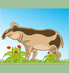 Wildlife to asia tapir on nature vector