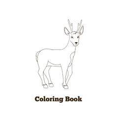 Coloring book forest animal roe deer cartoon vector image