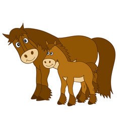 cute cartoon horse with foal vector image