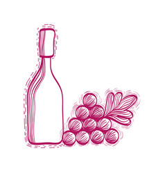 wine bottle with grape fruit vector image vector image