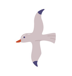 Flying seagull gull bird summer travel and vector