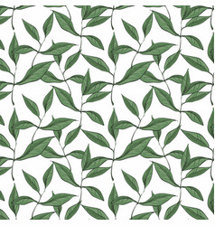 pattern with green leaves isolated on white vector image