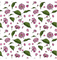 Pink sakura flowers and green leaflets vector