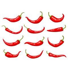 Red peppers hot delicious natural mexican vector