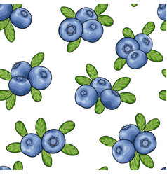 Seamless pattern blueberry with leaves contour on vector