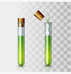 set scientific or medical glassware with cork vector image