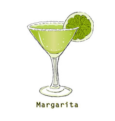 Sketch of cocktail margarita on a white background vector