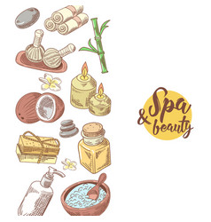 Spa wellness beauty hand drawn background vector