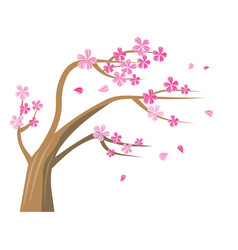 sakura tree with pink flowers vector image vector image