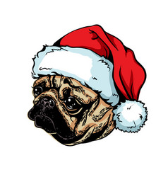 Christmas greeting card breed dog pug wearing a vector