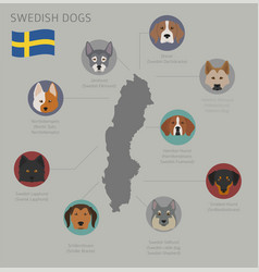 Dogs country origin swedish dog breeds vector