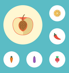 Flat icons aubergine citrus root and other vector