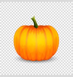 glossy cartoon halloween pumpkin icon vector image