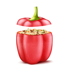 Stuffed bell pepper with rice and mince vector