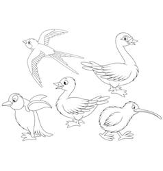Wild birds vector