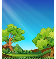 Forest and sky vector image vector image
