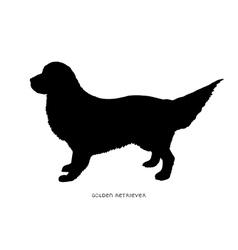 Black silhouette of dog Golden Retriever vector