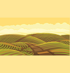 field landscape agricultural growing young plant vector image