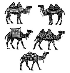 Set of stylized figures of decorative camels vector