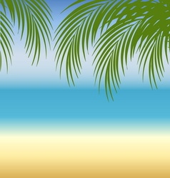 Beach background with sea sand and palm trees vector image vector image