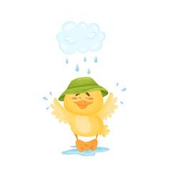 Cartoon duckling walks in rain vector