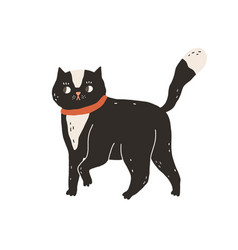 Cute careful cat walking and looking amazed vector